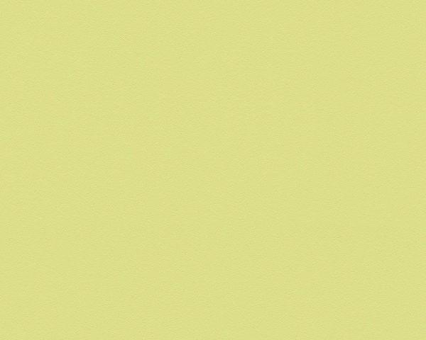 A.S. Création Tapete - Meistervlies, Glatte Wand, # 309556, Vliestapete, uni, hellgün, 10,05m x 0,53