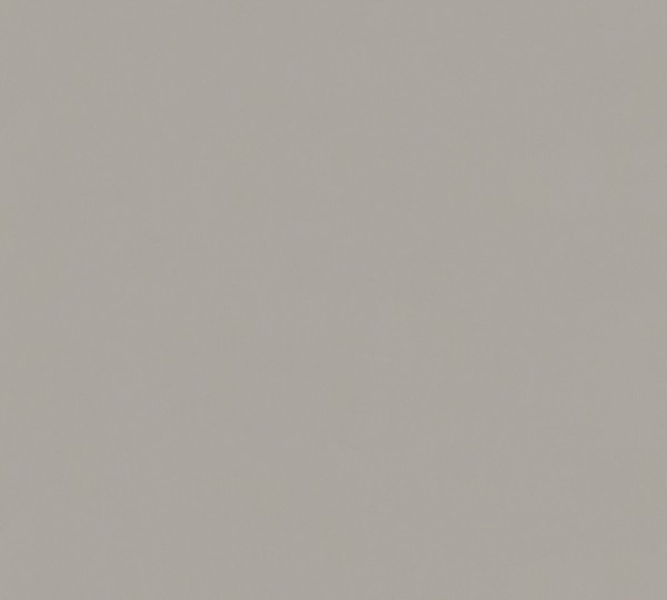 A.S. Création, Longlife Colours, # 307257, Vliestapete, uni, Beige Grau, 21,00 m x 1,06 m
